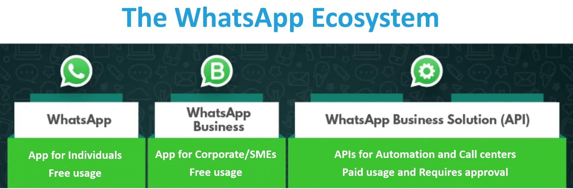 Difference Between Whatsapp Whatsapp Business And Whatsapp Business Api